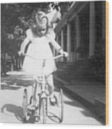 Little Girl On Vintage Bike Wood Print