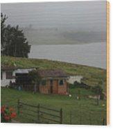 Little House On The Lake Wood Print