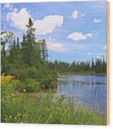 Little Iron Lake Wood Print