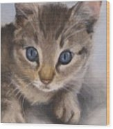 Little Kitty Wood Print