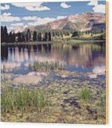 Little Molas Lake Colorado Wood Print