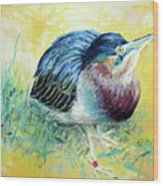 Little Night Heron Wood Print