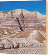 Little Painted Desert #5 Wood Print