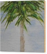 Little Palm Tree Wood Print