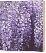 Little Petals Db Wood Print