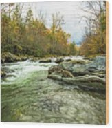 Little Pigeon River Greenbrier Area Of Smoky Mountains Wood Print
