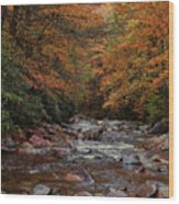 Little Pigeon River In Autumn Wood Print