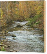 Little Pigeon River In Fall Smoky Mountains National Park Wood Print