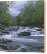 Little Pigeon River Wood Print