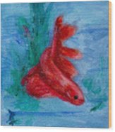 Little Red Betta Fish Wood Print by Brenda Thour