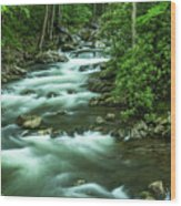 Little River Tremont Area Of Smoky Mountains National Park Wood Print