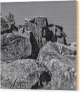 Little Round Top Gettysburg Wood Print