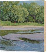 Little Sioux Sandbar Wood Print