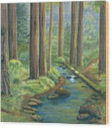 Little Stream In The Woods Wood Print by Vidyut Singhal