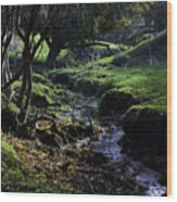 Little Stream Wood Print