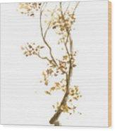 Little Tree 57 Wood Print