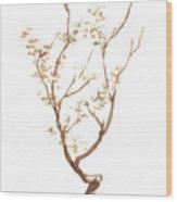 Little Tree 58 Wood Print