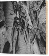 Little Wild Horse Canyon Bw Wood Print