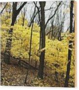 Little Yellow Trees Wood Print