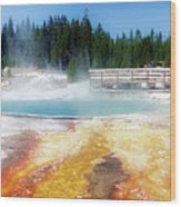 Live Dream Own Yellowstone Park Black Pool Text Wood Print