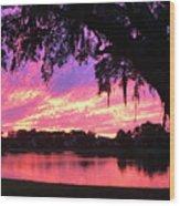Live Oak Sunset Wood Print