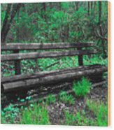 Lively Color Wood Print