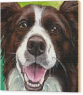 Liver And White Border Collie Wood Print by Dottie Dracos