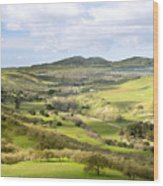Livermore Valley Wood Print