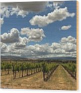Livermore Vineyard Wood Print