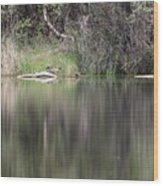 Living On The Pond Wood Print