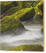Living Waters Wood Print