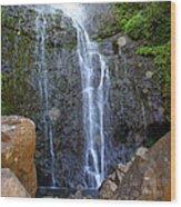 Living Waters - Wailua Falls Maui Wood Print