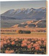 Livingston Montana Wood Print