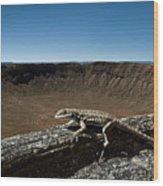 Lizard Crater Wood Print