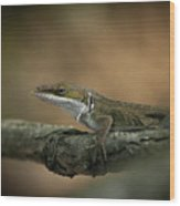 Lizard Deception Wildlife Art Wood Print