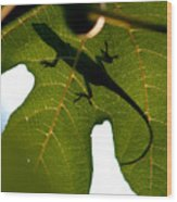 Lizard On A Fig Leaf Wood Print