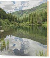 Lizard Lake Reflections Wood Print