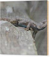 Lizard On Wood Fence Shiloh Tennessee 031620161698 Wood Print