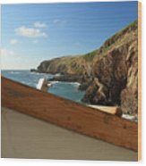 Lizard Point Wood Print