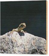 Lizard Rock Wood Print