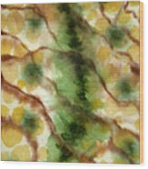 Lizard Skin Abstract Wood Print