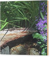 Lizards In The Garden Wood Print