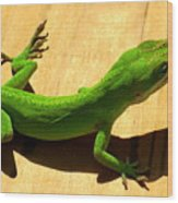 Lizzy Snack Wood Print