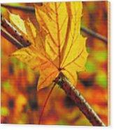 Leaving Autumn Wood Print