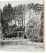 Lloyd's Portal Wood Print
