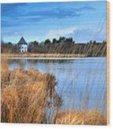 Llyn Llech Owain Country Park 1 Wood Print