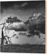 Loan Tree Wood Print