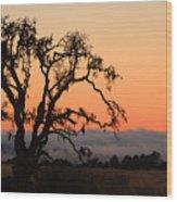 Loan Tree Overlooking Fog Wood Print