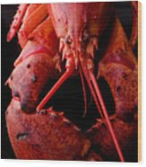 Lobster Wood Print by Jim DeLillo