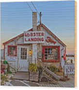 Lobster Landing Sunset Wood Print
